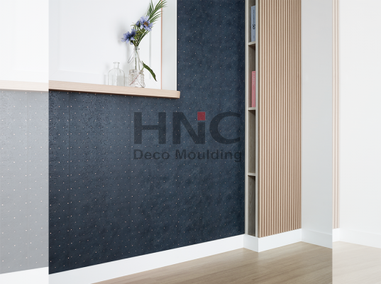 SHOWROOM HNC 1