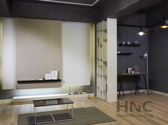SHOWROOM HNC 47