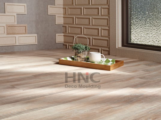 SHOWROOM HNC 10